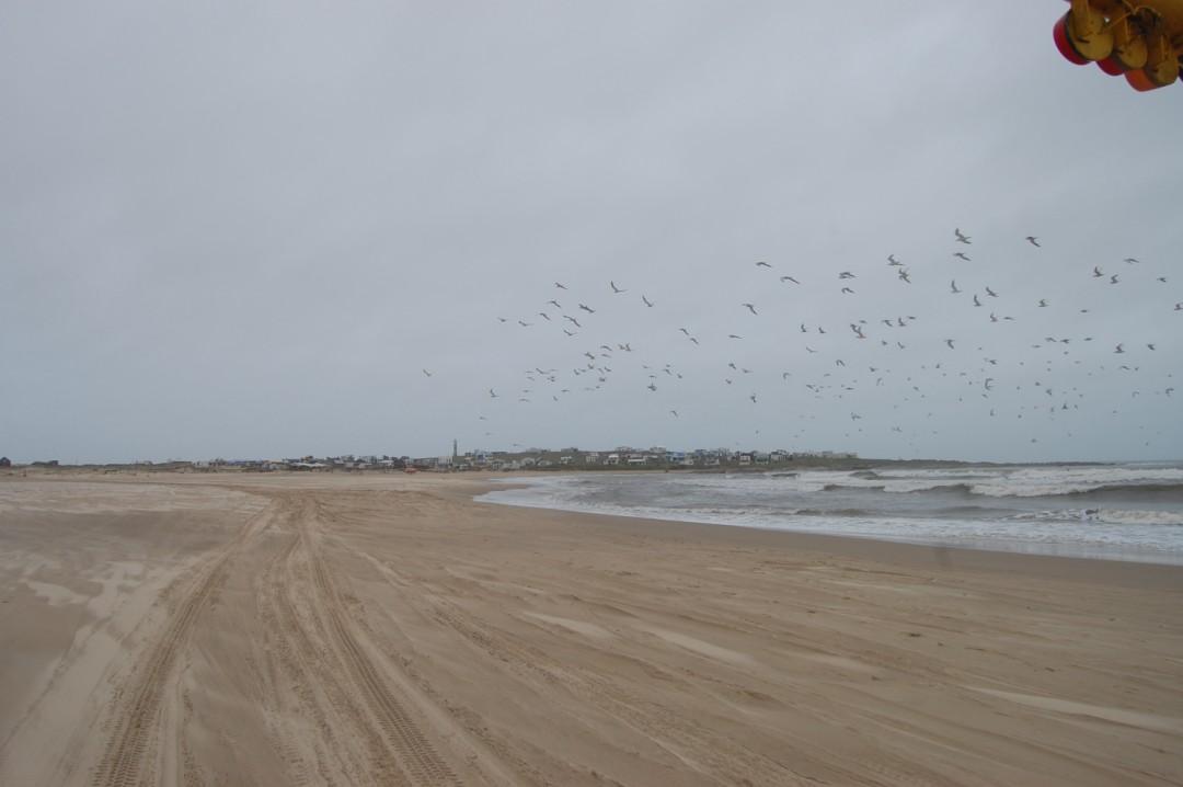 Uruguay-La-paloma-cabo-polonio (17).jpg