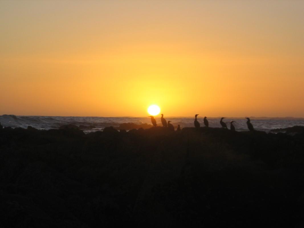 Uruguay-La-paloma-cabo-polonio (8).jpg