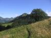 Auvergne-Cantal-été (14).jpg