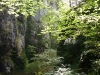 Auvergne-Cantal-été (27).JPG