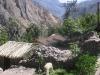 Perou-peru-canyon-colca (10).jpg