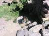 Perou-peru-canyon-colca (11).jpg