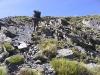 Bolivie-bolivia-cordillere-royale-condoriri (16).jpg