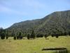 Chili-Chile-volcan-Puyehue-Osorno-Tronador (18).jpg