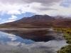 bolivie-bolivia-sud-lipez-laguna-canapa-colorada-salar-atacama (16).jpg