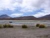 bolivie-bolivia-sud-lipez-laguna-canapa-colorada-salar-atacama (20).jpg