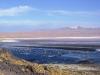 bolivie-bolivia-sud-lipez-laguna-canapa-colorada-salar-atacama (24).jpg