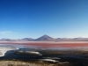 bolivie-bolivia-sud-lipez-laguna-canapa-colorada-salar-atacama (27).jpg