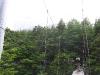 chili-torres-del-paine-patagonie (26).jpg
