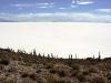 bolivie-bolivia-salar-huyuni-train-desert-sel-isla-pescado-Incahuasi (21).jpg