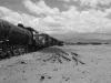 bolivie-bolivia-salar-huyuni-train-desert-sel-isla-pescado-Incahuasi (3).jpg