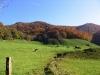 cantal-vic-sur-cere-automne-022.jpg