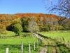 cantal-vic-sur-cere-automne-025.jpg