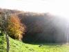 cantal-vic-sur-cere-automne-030.jpg