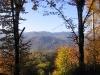 cantal-vic-sur-cere-automne-.jpg