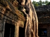 angkor-temple-cambodge(19)
