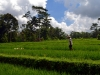 bali-ubud-batur-agung(1)