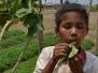Kampot et Rabbit Island