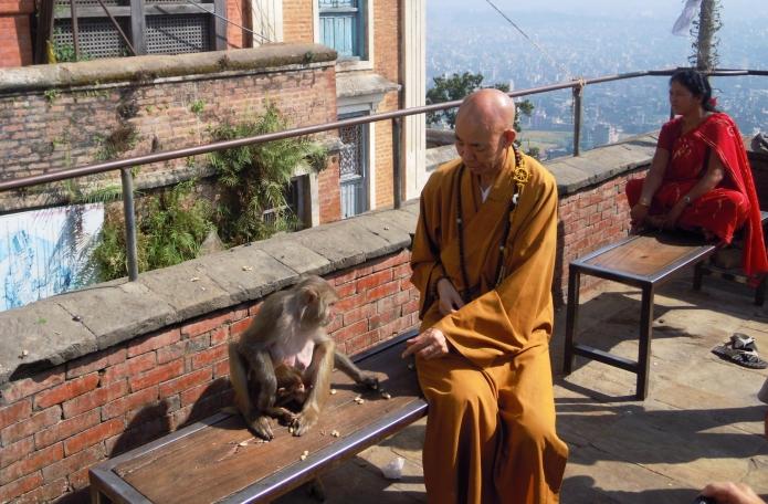 katmandou-temple-monkey(34)