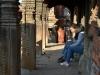 katmandou-temple-monkey(24)