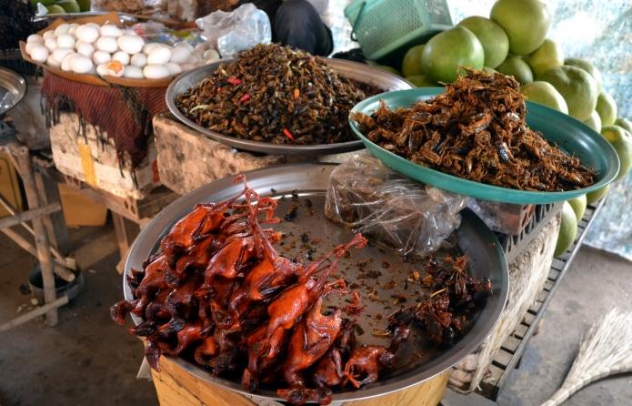 Kratie-mekong(2)