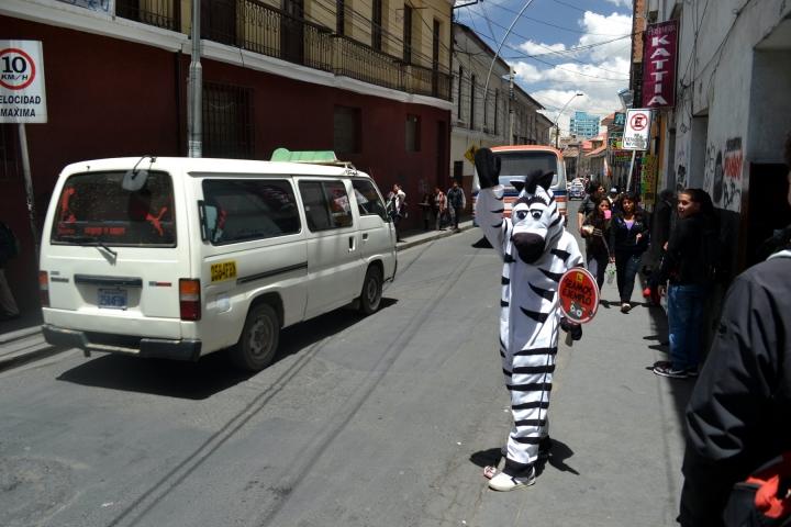 la-paz-titicaca-coroico46