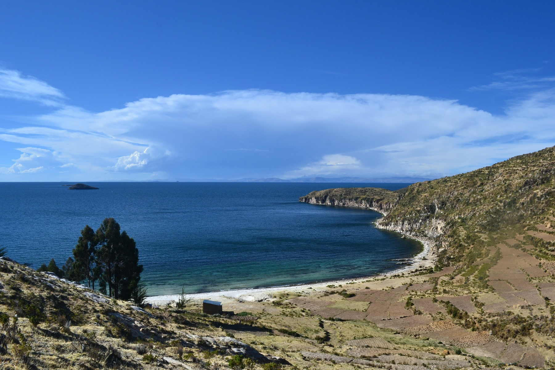 la-paz-titicaca-coroico19