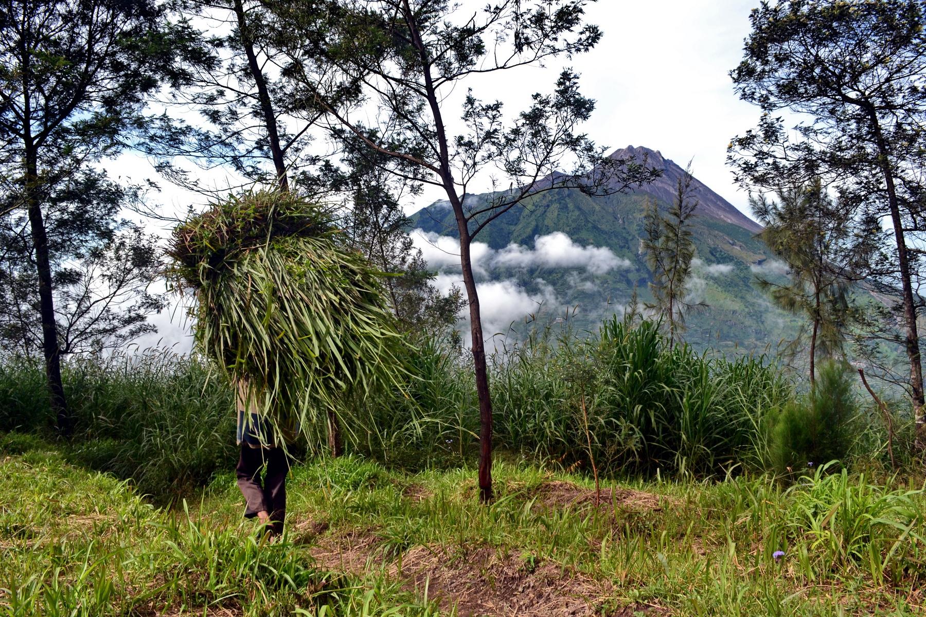 indonesie-yodgakarta-merapi(7)