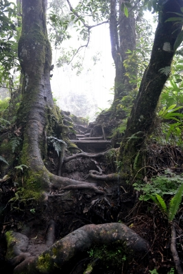lombok-rinjani-trek(2)