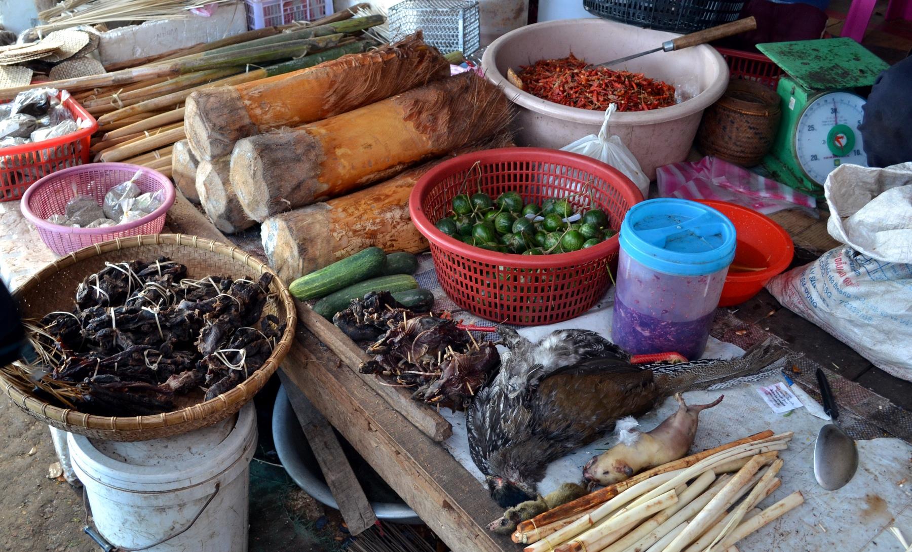 laos-loop-konglor-(18)