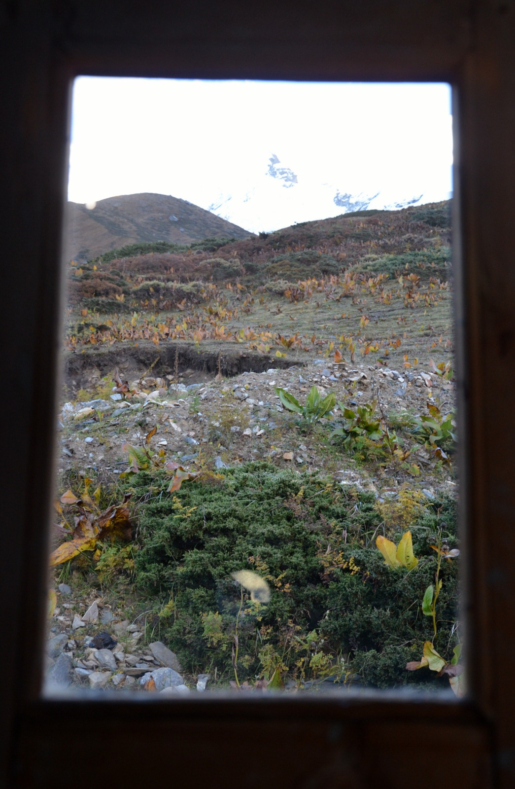 Tour-des-annapurna-(6)