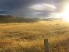 Argentine-ushuaia-terre-de-feu-patagonie.jpg